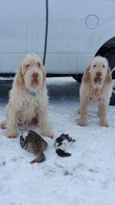Doc and Elettra pose with ducks, 12-29-15