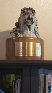 Asti's Compassion Trophy awarded to Elvis